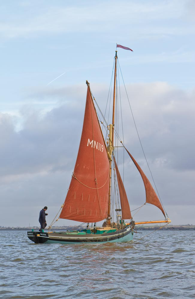 Marigold Charters - Blackwater sailing adventures